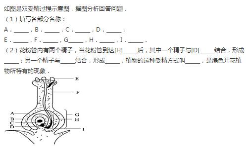 初中画电路图例题