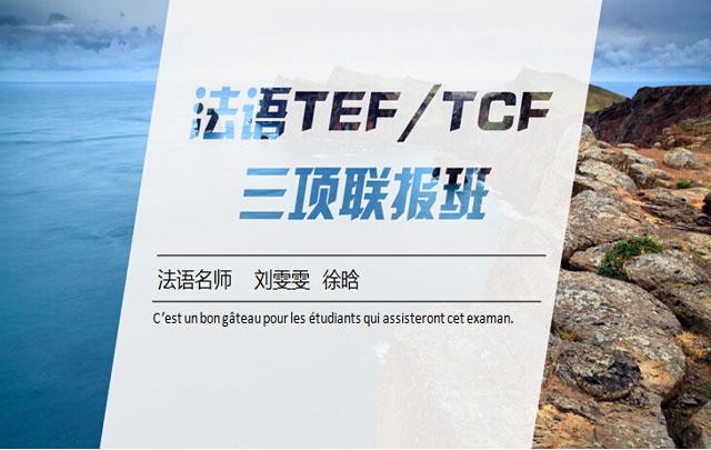 【TEF/TCF考试】全能精讲通关班