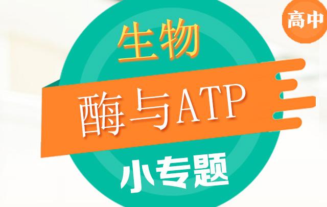 高中生物小专题之酶与ATP
